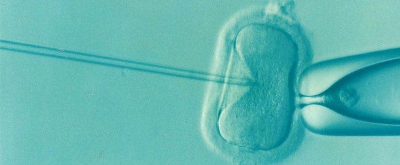 Ciclo FIV ICSI – Técnica de Microinyección Espermática