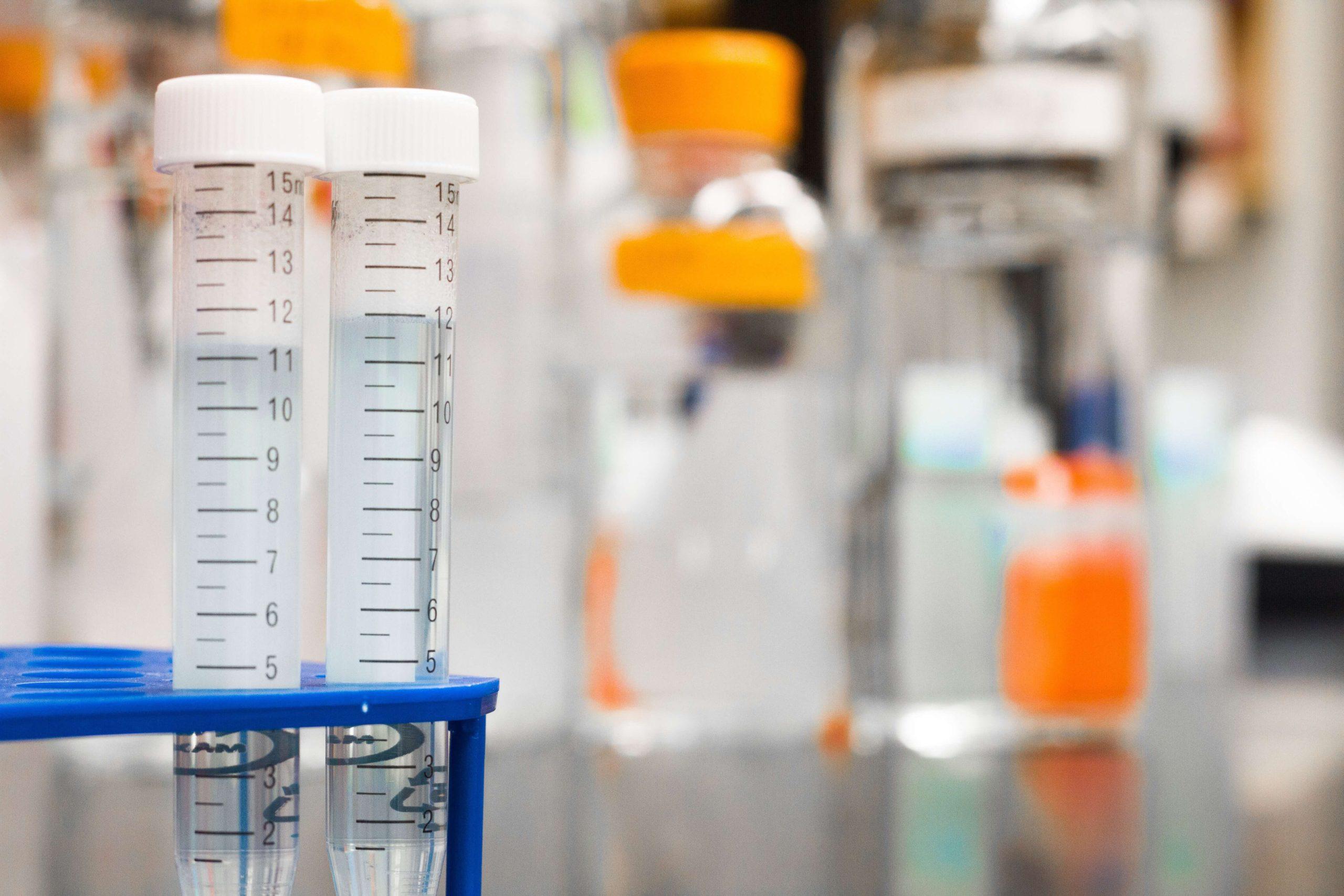 El enigma de la implantación embrionaria