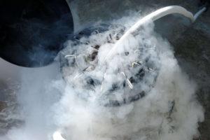 Vitrificación de Embriones en Ciclo FIV